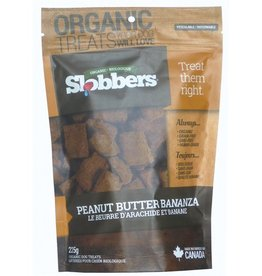 Slobbers Slobbers Organic Peanut Butter Bananza Biscuits 250g