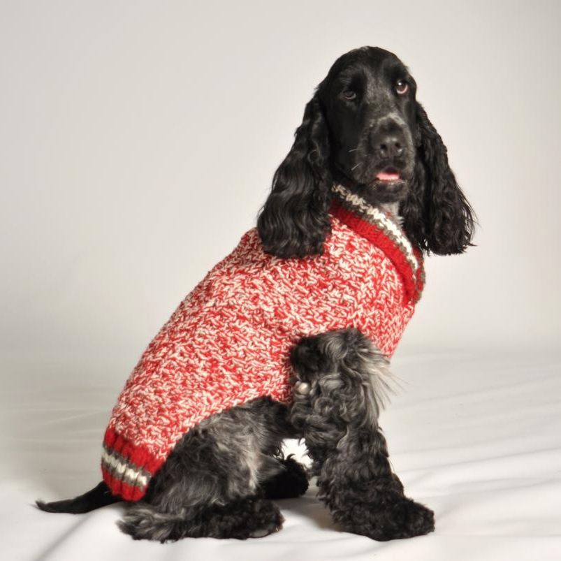 Chilly Dog Chilly Dog Red Camp Sweater