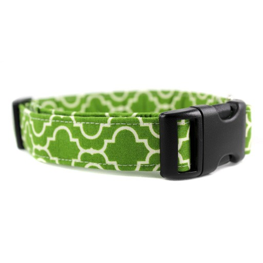 Bow Wow Couture Bow Wow Couture Tiles in Green Collar