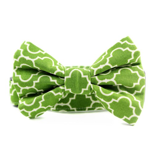 Bow Wow Couture Bow Wow Couture Tiles in Green Bow Tie
