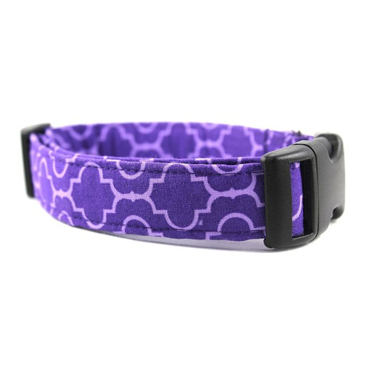 """Bow Wow Couture Bow Wow Couture Tiles in Purple Cat Collar 3/8"""""""