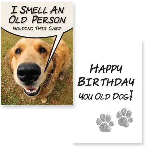 Dog Speak Dog Speak Greeting Card Birthday I Smell An Old Person