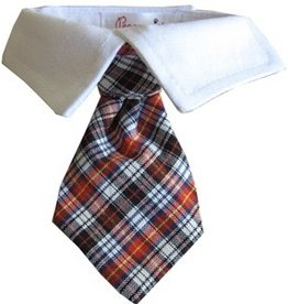 Pooch Outfitter Pooch Outfitters Nicholas Shirt Collar Tie