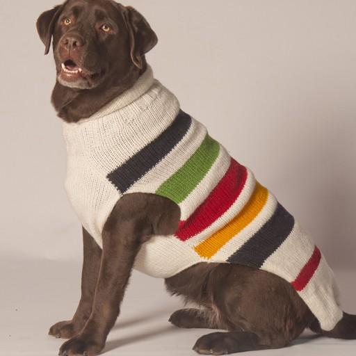 Chilly Dog Chilly Dog Blanket