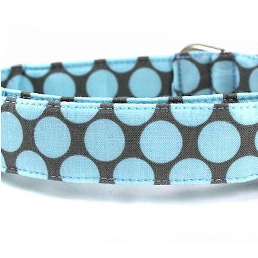 """Bow Wow Couture Bow Wow Couture Fresh Dots in Honey Blue Lead 3/4"""" x 5'"""