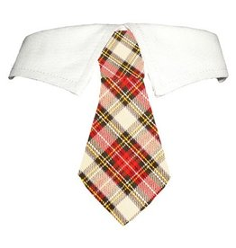 Pooch Outfitter Pooch Outfitters Carter Shirt Collar Plaid Tie