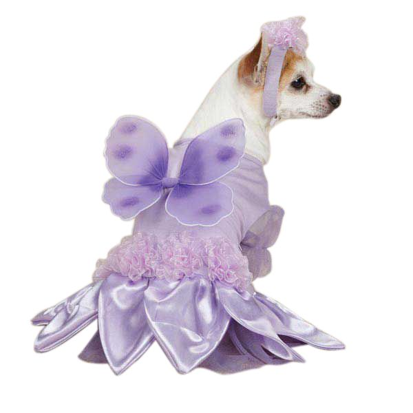 Casual Canine Sugar Plum Fairy Costume