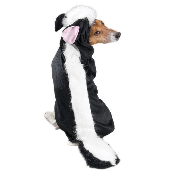 Casual Canine Lil' Stinker Costume