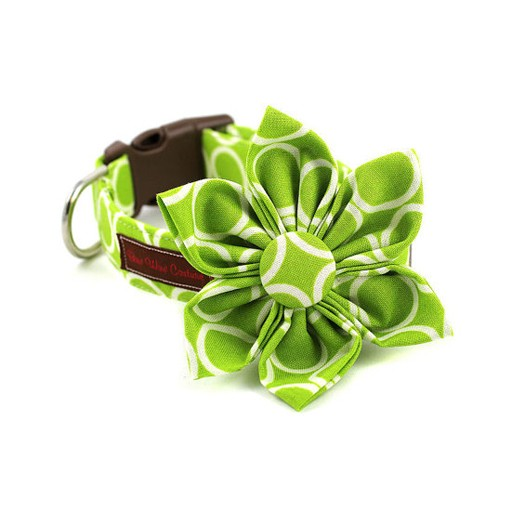 Bow Wow Couture Bow Wow Couture Mod Dog in Lime Flower