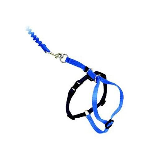 Easy Walk Cat Harness w/Leash