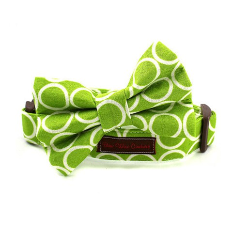 Bow Wow Couture Bow Wow Couture Mod Dog in Lime Bow Tie