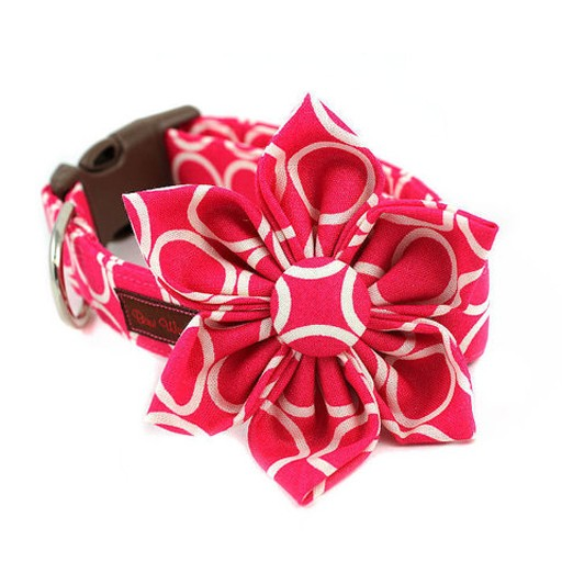 Bow Wow Couture Bow Wow Couture Mod Dog in Pink Flower