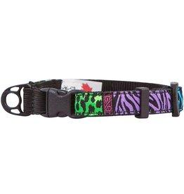 RC Pet RC Pet Kitty Breakaway Collar Back to the Wild