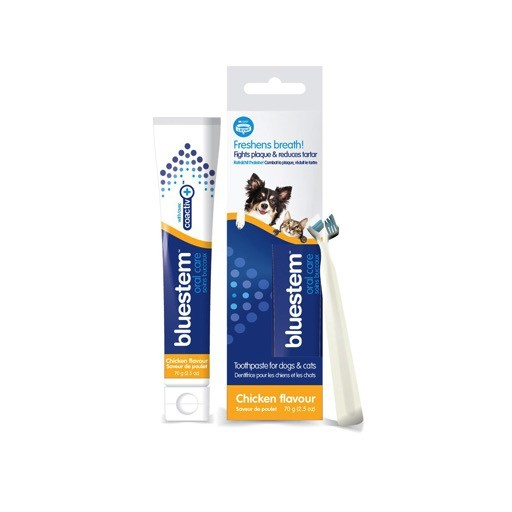 Bluestem Oral Care Toothpaste Chicken 70g