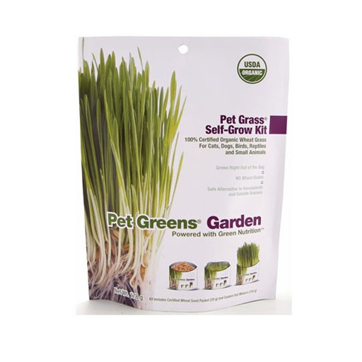Pet Greens Garden Self Grow Kit 113g