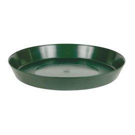 Premium Green Saucer 14