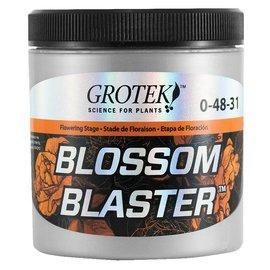 Grotek Grotek Blossom Blaster, 130 g