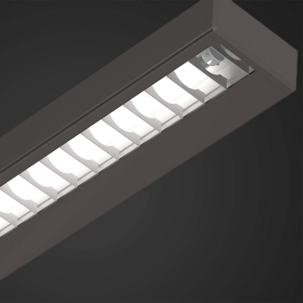 A.Light C2