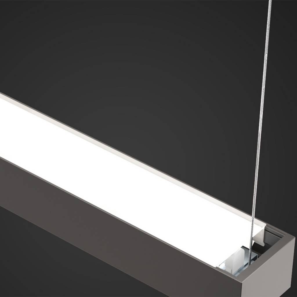 A.Light D1