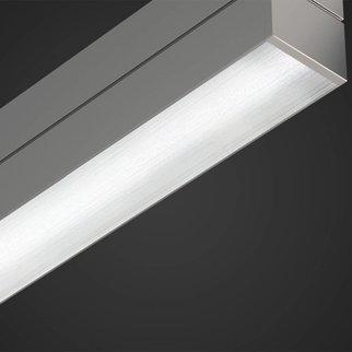A.Light D2