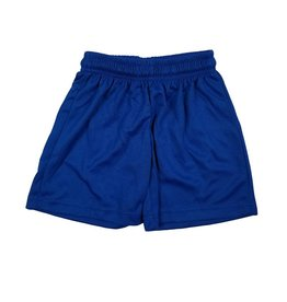 Ramco MICROMESH GYM SHORTS ROYAL