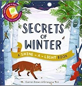 Shine a Light Secrets of Winter