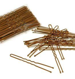 FH2 AZ0028-3 Inch Hair Pin-BROWN