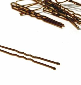FH2 AZ0029-2 Inch Hair Pin-BROWN