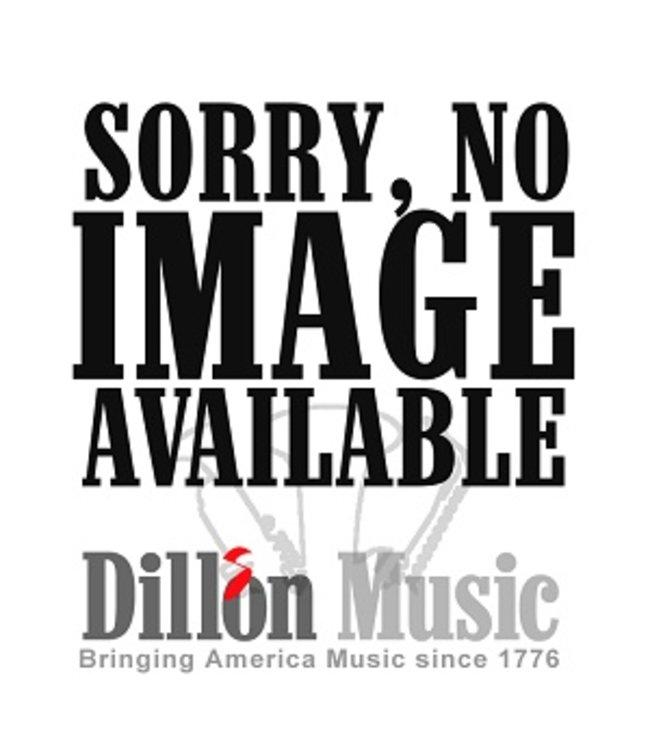 Dillon Music Dillon Bb Clarinet