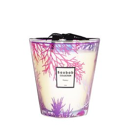 BAOBAB COLLECTION PERSEUS CANDLE MAX 16