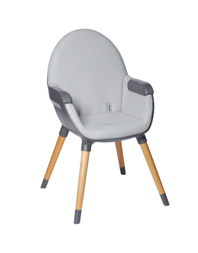 Skip Hop Skip Hop Tuo Convertible High Chair