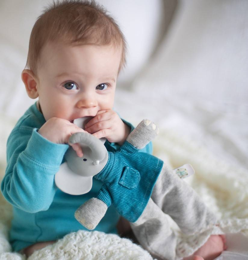 Meiya & Alvin Alvin the Elephant Soft Rattle Teether