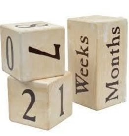 Maple Landmark Photo Prop Milestone Blocks