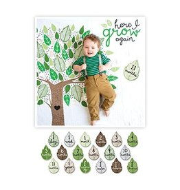 Mary Meyer Baby's First Year Blanket & Cards Set- Here I Grow Again