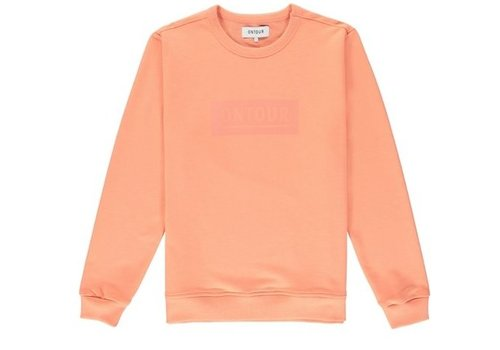 ONTOUR Window sweater men orange