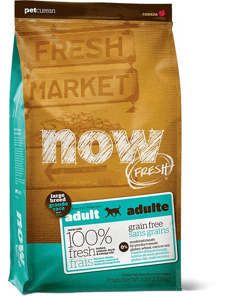 Now Fresh Large Breed Adult 12lb