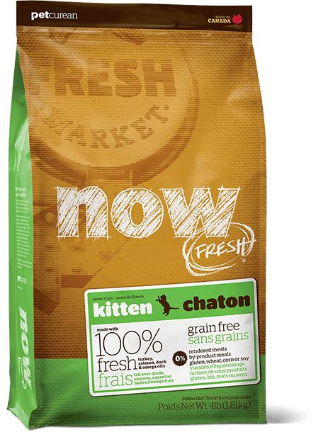 Now Cat Fresh Grain Free Kitten 4lb