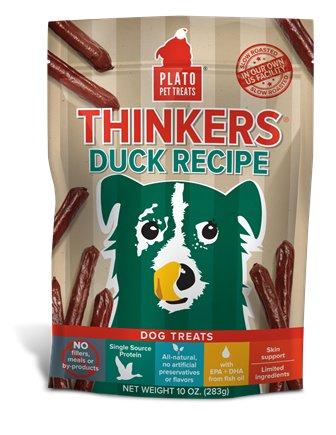 Plato Plato Thinkers Duck Stick 22oz