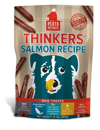 Plato Plato Thinkers Salmon Stick 22oz