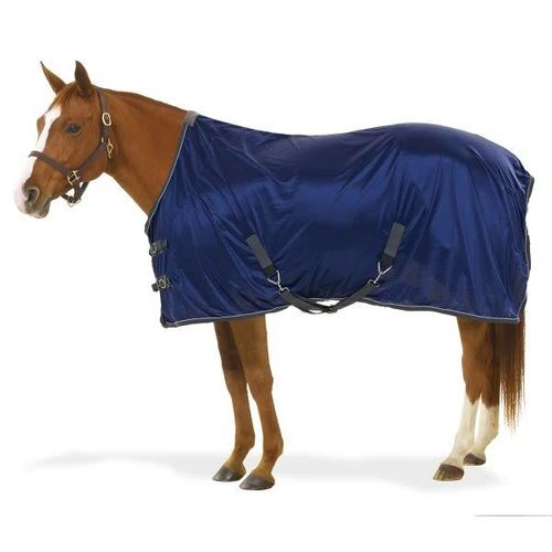Athletic Stable Sheet