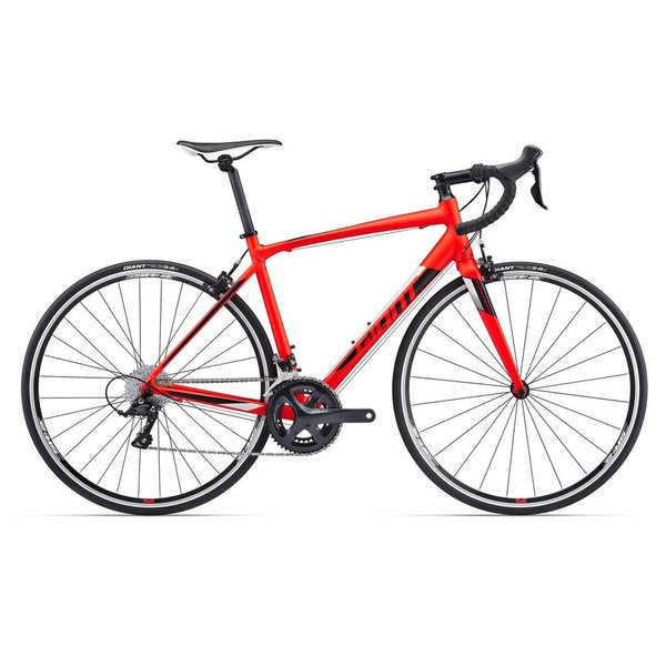 Giant Contend SL 1 (2017)