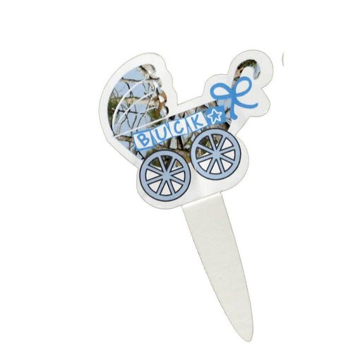 Baby Buck Party Picks 24ct