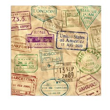 Around the World Lunch Napkins