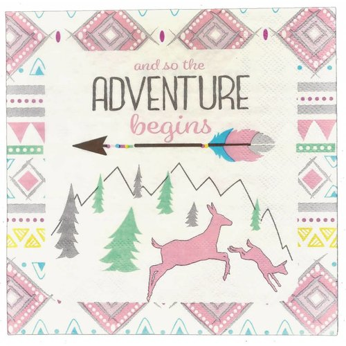 The Adventure Begins Girl Lunch Napkin