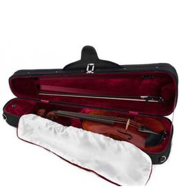 Rental Violin Outfit