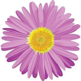 Cutouts- Flower-Daisy Bulk-13''