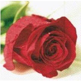 Napkins-BEV-Valentine Rose-20pkg-3ply- Discontinued