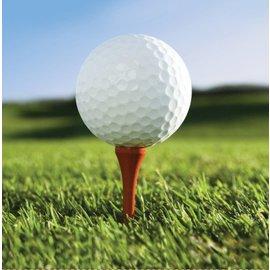 Napkins-BEV-Golf Fanatic-16pkg-2ply- Discontinued