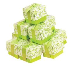 Favor Boxes- Lime Design- 25pk