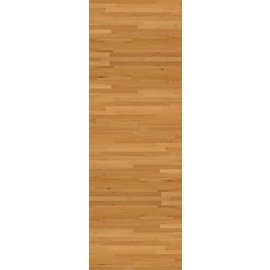 Tablecover-Rectangle-Basketball Fanatic-Plastic